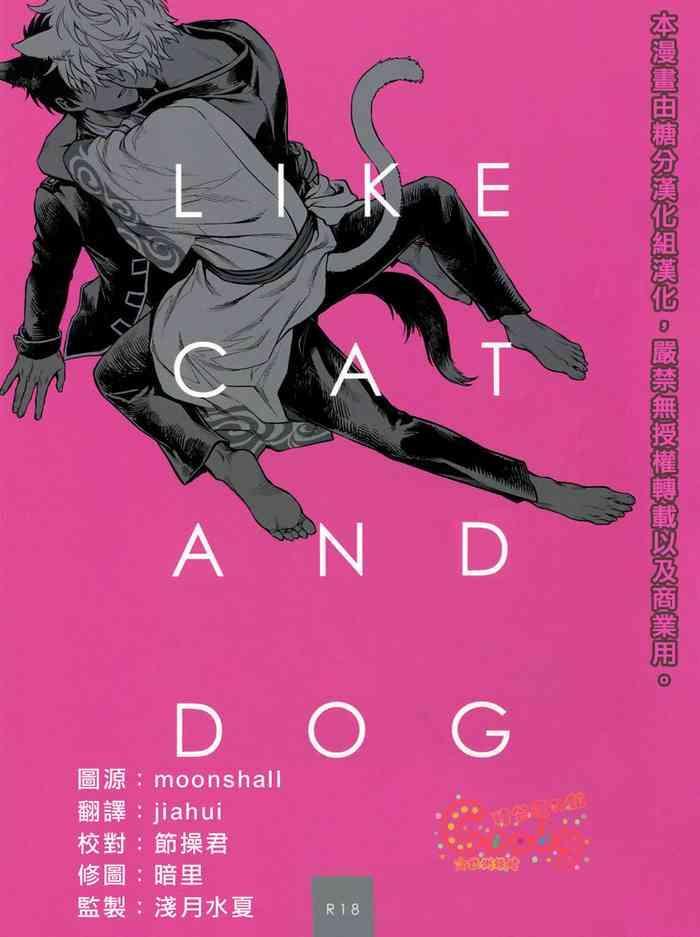 like cat and dog cover 1
